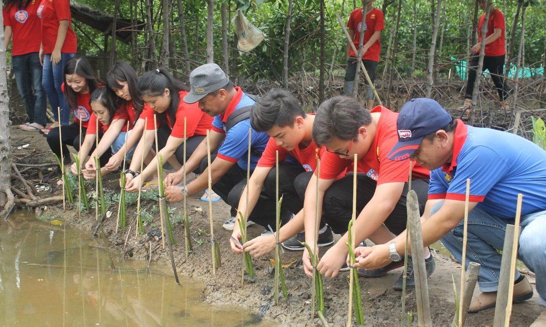 Mangrove Penyelamat yang Terabaikan